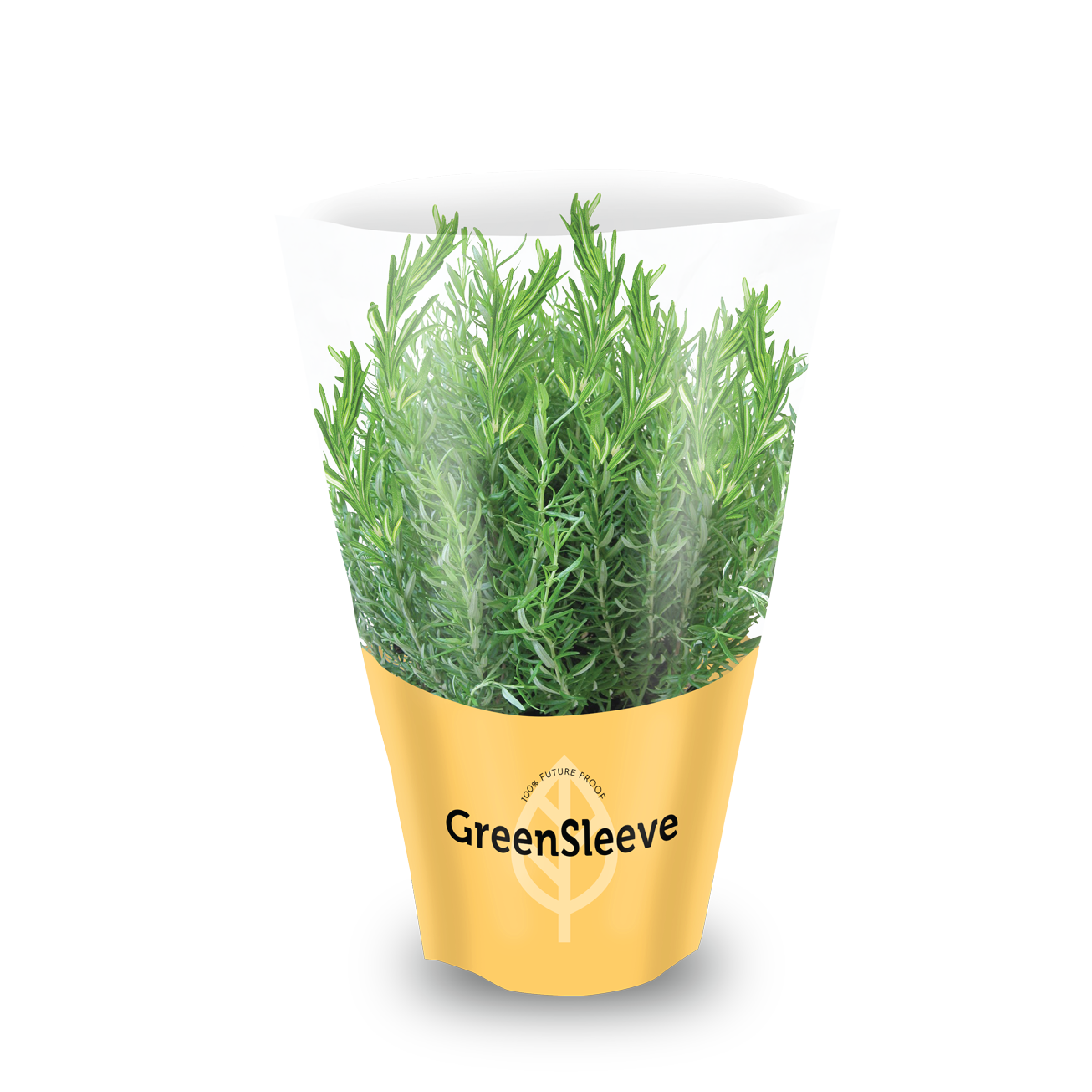 Home  Compostable  Film sleeve